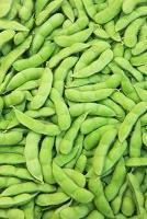 食材 枝豆