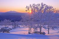 北海道 霧氷の小清水峠から日の出と斜里岳