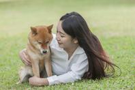 柴犬と外国人女性