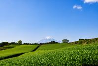 静岡県 富士市今宮から見た富士山