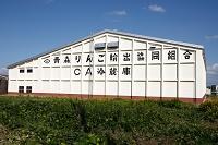 青森県 弘前市 リンゴの栽培