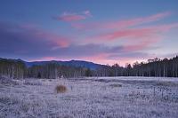 北海道 十勝三股の朝と霜