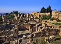 チュニジア カルタゴ遺跡 ビュルサの丘 ポエニ人の住居跡