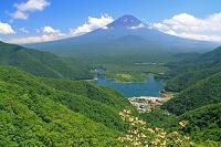 山梨県 精進峠付近から精進湖と富士山