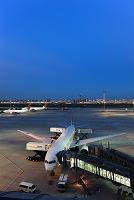 東京都 羽田空港国際線ターミナル