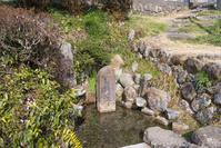 滋賀県 日野町 若草清水
