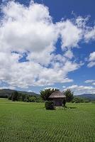 岩手県 荒神神社
