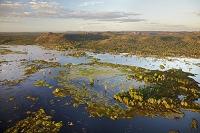 オーストラリア マジェラ湿原