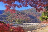 京都府 嵐山