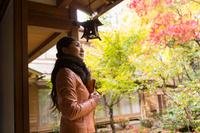 日本庭園を眺める日本人女性