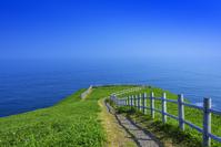 北海道 浜中町 涙岬へ向かう遊歩道