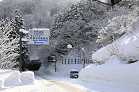 富山県 冬の道路