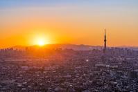 千葉県より東京スカイツリーと街並み 夕景