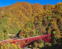 富山県 黒部峡谷鉄道トロッコ電車