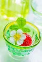 グリーンのグラスととイチゴの花と実