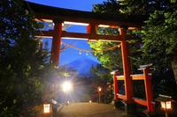 山梨県 富士浅間神社 ライトアップされた参道の鳥居と夕刻の富...
