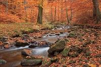 ドイツ 紅葉と川