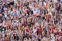 ウェーブをする観客席の群衆