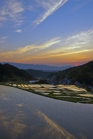 奈良県 早苗の棚田と二上山夕日
