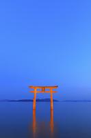 滋賀県 白鬚神社 ライトアップされた湖中大鳥居と琵琶湖