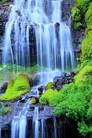 山梨県 北杜市 吐竜の滝
