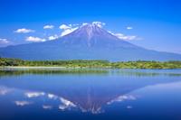静岡県 新緑の田貫湖と逆さ富士山