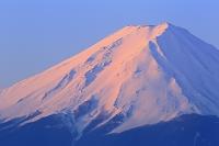 山梨県 御坂みちより見る夜明けの富士山