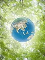 新緑背景と地球儀