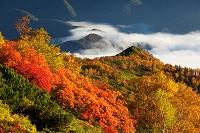 北海道 銀泉台の紅葉と雲海