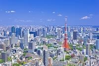 東京都 東京タワーと高層ビル群