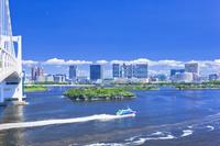 東京都 お台場海浜公園と高速船