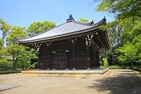 京都府 仁和寺 新緑の経堂