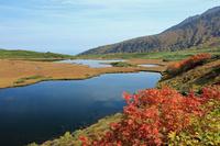 北海道 上川町 大雪山国立公園 愛山渓
