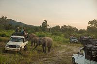 スリランカ 自然保護区