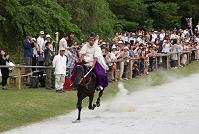 葵祭 社頭の儀 走馬奉納(馬を走らせる儀式)
