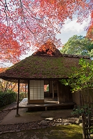 京都府 金福寺 秋の芭蕉庵
