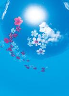 水面に浮かぶ花