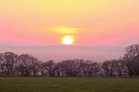 北海道 牧場の日没