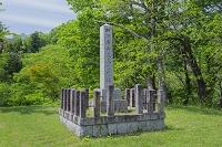 京都府 春の細川ガラシャ夫人の碑