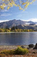 ニュージーランド ワナカ