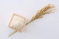 枡に入った米と稲