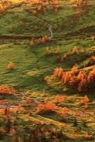 群馬県 渋峠から望む芳ヶ平の朝焼け