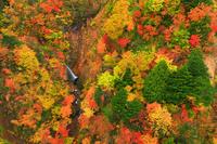 福島県 つばくろ谷の紅葉