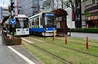 熊本市電の軌道敷緑化