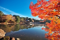 奈良 鷺池と浮見堂