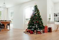クリスマスツリーの飾られたリビング