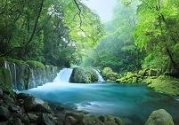 熊本県 菊池市 菊池渓谷 黎明の滝と森