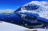 南極 南極半島