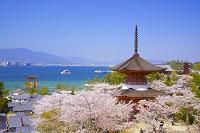 広島県 廿日市市 厳島神社