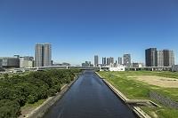 東雲運河と豊洲・東雲のビル群